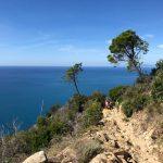 Cinque Terre Walking Park, July 2020