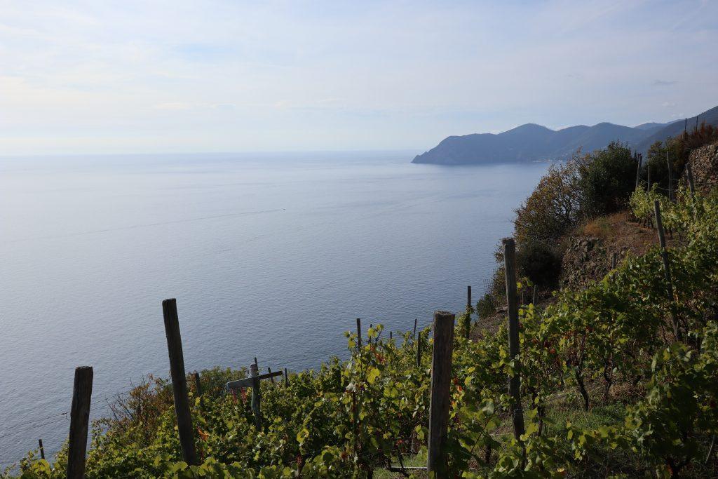 Via Beccara, Trekking alle Cinque Terre