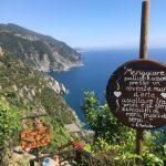 Visit a vineyard and taste wine in Riomaggiore